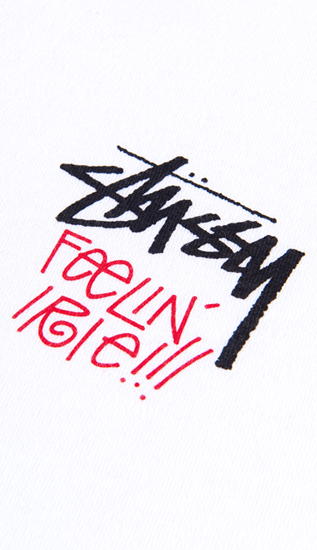 /WI/upimage/ex15_stussy_w_h02.png